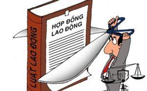 lao_dong_jtpp